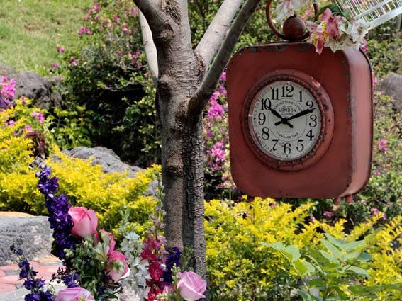 El cid cuernavaca jardines