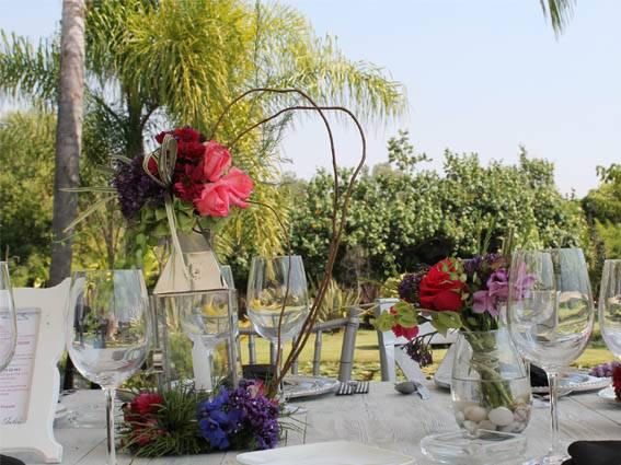 jardines con palmeras cuernavaca